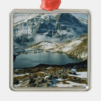 Switzerland, Grindelwald, Bernese Alps, View Silver-Colored Square Decoration