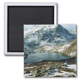 Switzerland, Grindelwald, Bernese Alps, View Square Magnet