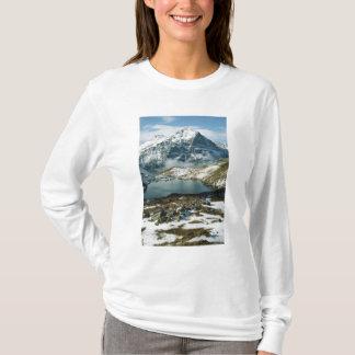 Switzerland, Grindelwald, Bernese Alps, View T-Shirt