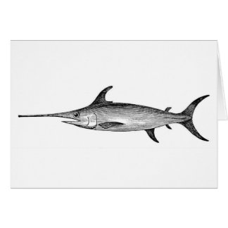 Swordfish card, scientific illustration greeting card