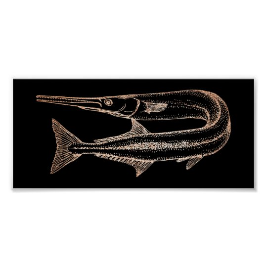 Swordfish Ocean Life Water Animials Black Poster