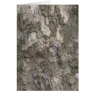 Sycamore bark card