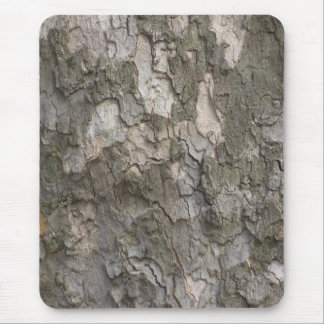 Sycamore bark mouse pads