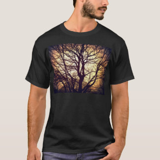 Sycamore Sunset T-Shirt