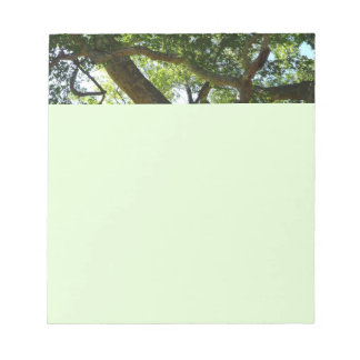 Sycamore Tree Green Nature Photography Notepad