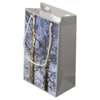 Sycamore Trees in a Winter Sky --- Small Gift Bag