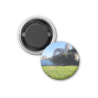 syd bridge grass 3 cm round magnet