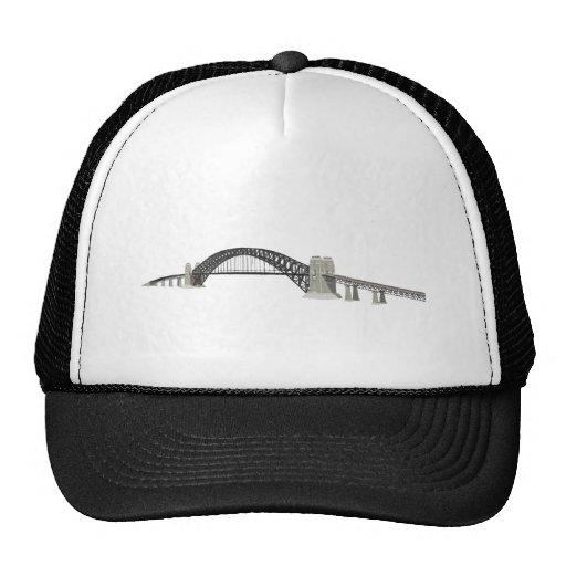 Sydney Harbour Bridge: 3D Model: Mesh Hat