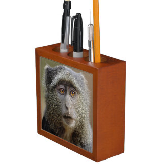 Sykes or Blue Monkey, Cercopithecus mitis, Desk Organiser