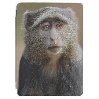 Sykes or Blue Monkey, Cercopithecus mitis, iPad Air Cover