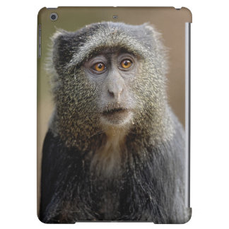 Sykes or Blue Monkey, Cercopithecus mitis, iPad Air Covers