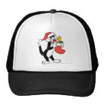 Sylvester Cat with stocking Hat