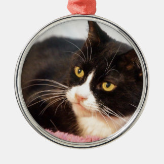 Sylvester Christmas Ornament
