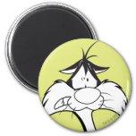 Sylvester Face Fridge Magnet