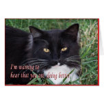 Sylvester-Get Well-customise Greeting Card