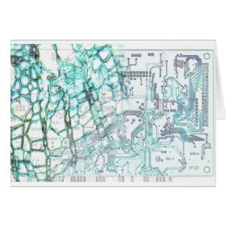 symbiosis - concept card