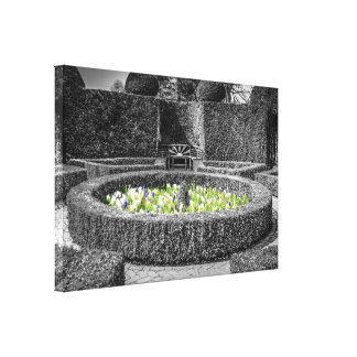 Symetrical Topiary Canvas Print