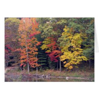 Sympathy -  Autumn trees and lake Card