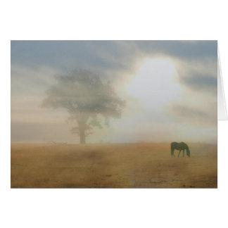 Sympathy Card for Horse Owner