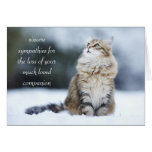 Sympathy Card for the Loss of a Cat