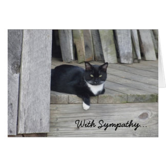 Sympathy Card -- Loss of Cat