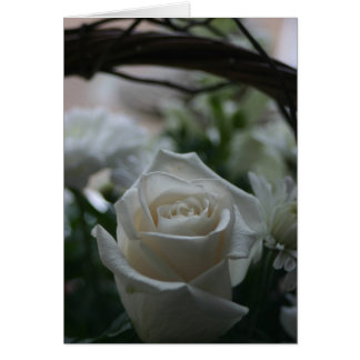 Sympathy Card white rose unique greeting cards