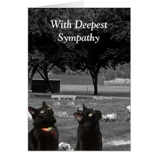 Sympathy Card with Black Cats