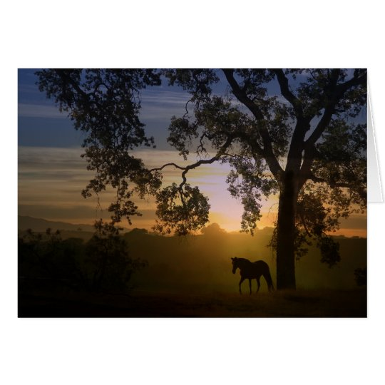 Sympathy for loss of horse oak tree and