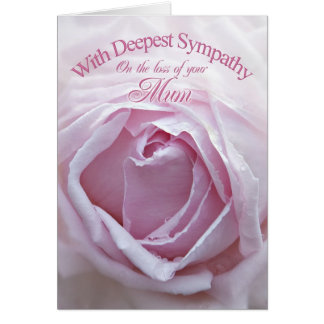 Sympathy for loss of Mum, a beautiful pink rose Card