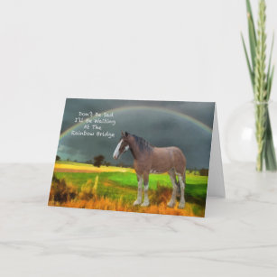 Sympathy for loss of pet horse card