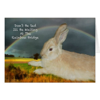 Sympathy for loss of pet rabbit greeting card