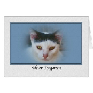 Sympathy for Loss of Pet with Cat Card