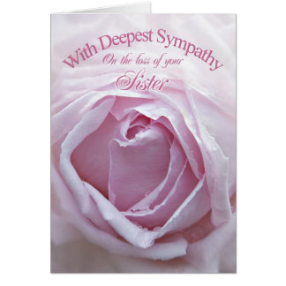 Sympathy on loss of sister, a beautiful pink rose card