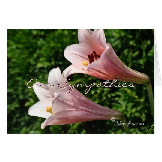 Sympathy- Pk Trumpet Lily- customise any occasion Card