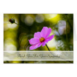 Sympathy Thank You Evening Pink Cosmos Wildflower