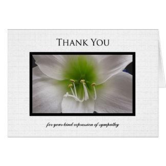 Sympathy Thank You Note Card - White Amaryllis