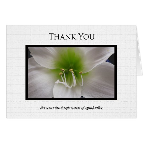 Sympathy Thank You Note Card - White Amaryllis
