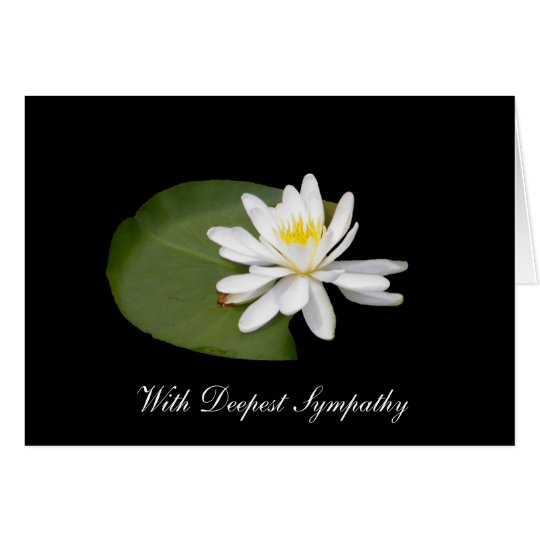 Sympathy - Water Lily Card