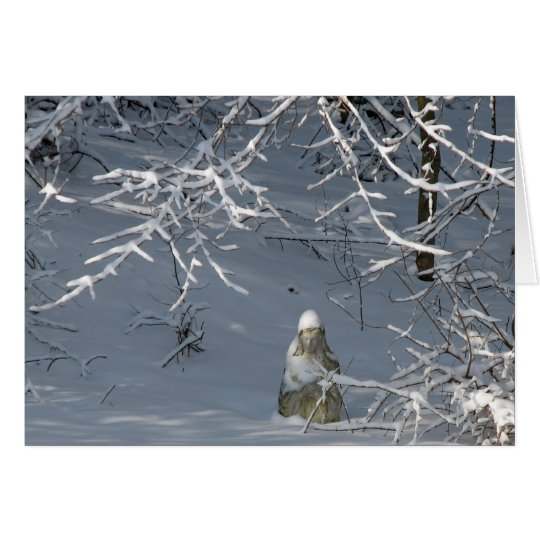 Sympathy - Winter Madonna Card