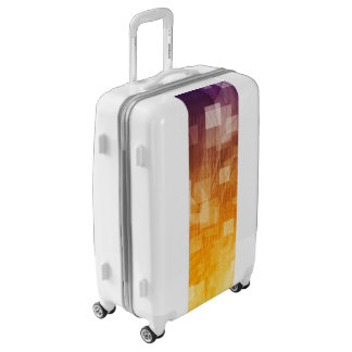 System Development Platform and Reporting Tool Luggage