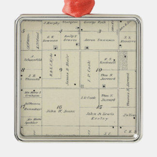 T20S R26E Tulare County Section Map Silver-Colored Square Decoration