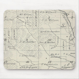 T20S R29E Tulare County Section Map Mouse Mat
