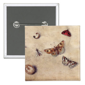 T31566 A Study of Various Insects, Fruit and Anima 15 Cm Square Badge