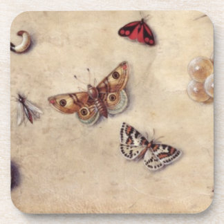 T31566 A Study of Various Insects, Fruit and Anima Drink Coasters