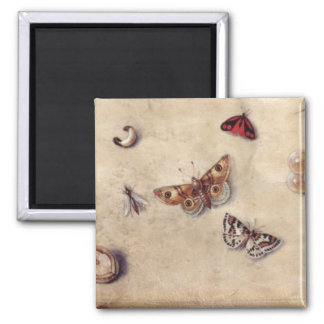 T31566 A Study of Various Insects, Fruit and Anima Square Magnet