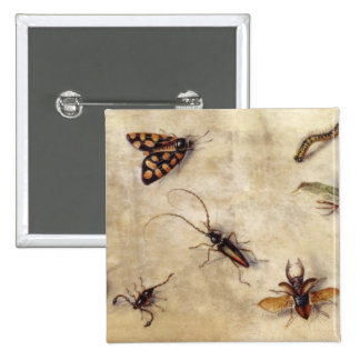 T31567 A Study of Various Insects, Fruit and Anima 15 Cm Square Badge