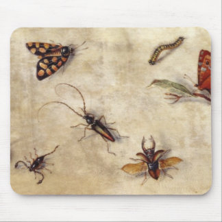 T31567 A Study of Various Insects, Fruit and Anima Mouse Mat