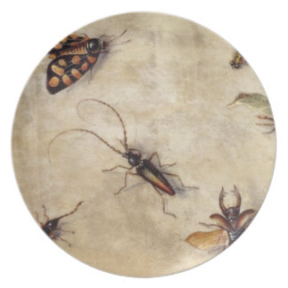 T31567 A Study of Various Insects, Fruit and Anima Plate