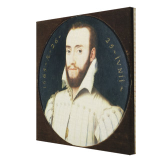 T34055 Portrait of a Bearded Gentleman, Aged 26, 1 Stretched Canvas Print