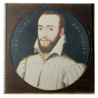 T34055 Portrait of a Bearded Gentleman, Aged 26, 1 Large Square Tile